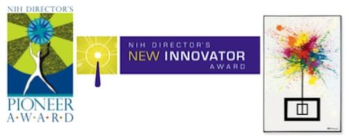 NIH award programs