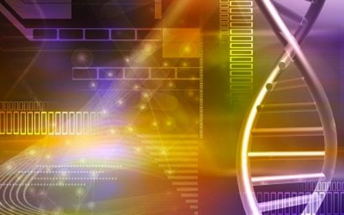 Hundreds of DNA mutations