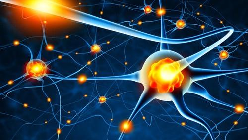 Brain Activity Map project