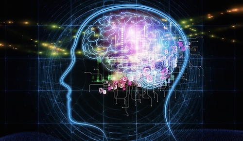 Brain mapping projects to collaborate