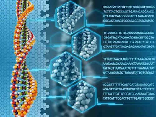Cancer genomic testing