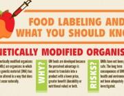 genetically-modified-organisms.jpg