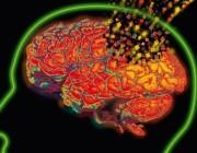loss-of-brain-cells.jpg