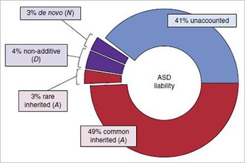 ASD Liability