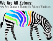we-are-all-zebras.png