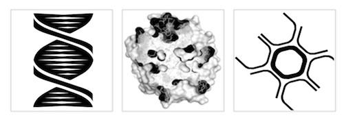 Biomarker Commons